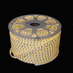 Dây LED đôi 2835 A001