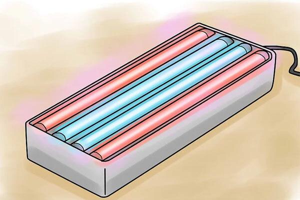 08 Bước trồng rau với đèn LED trồng cây + Ảnh minh họa chi tiết